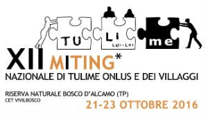 meeting-tulime-onlus-2016